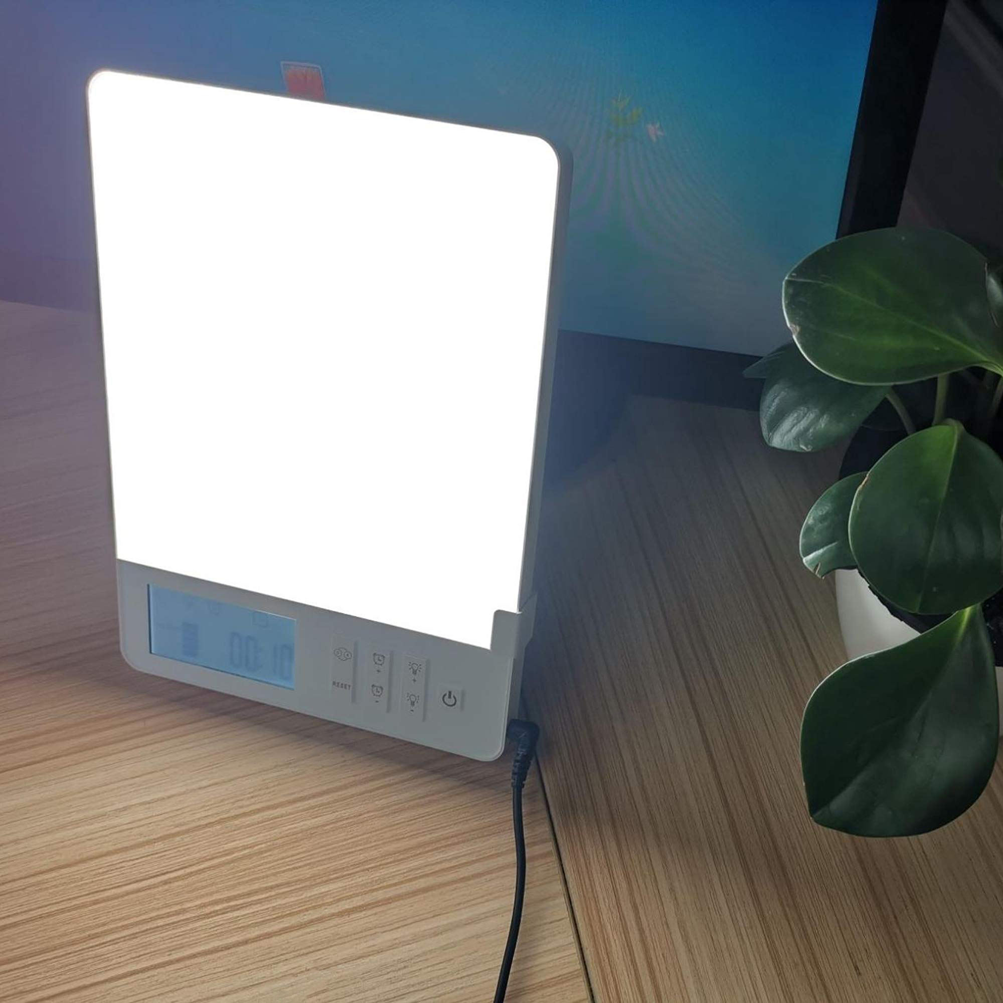Baolight LED daylight happy light