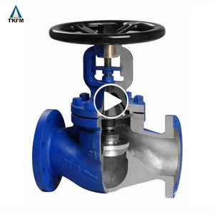 Din standard bellows seal ptfe lined dn150 pn40 cast iron globe valve for steam