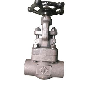 Manual type control sw end forged api 602 forged globe valve