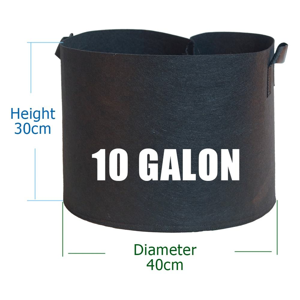 grow bags 10 gallon