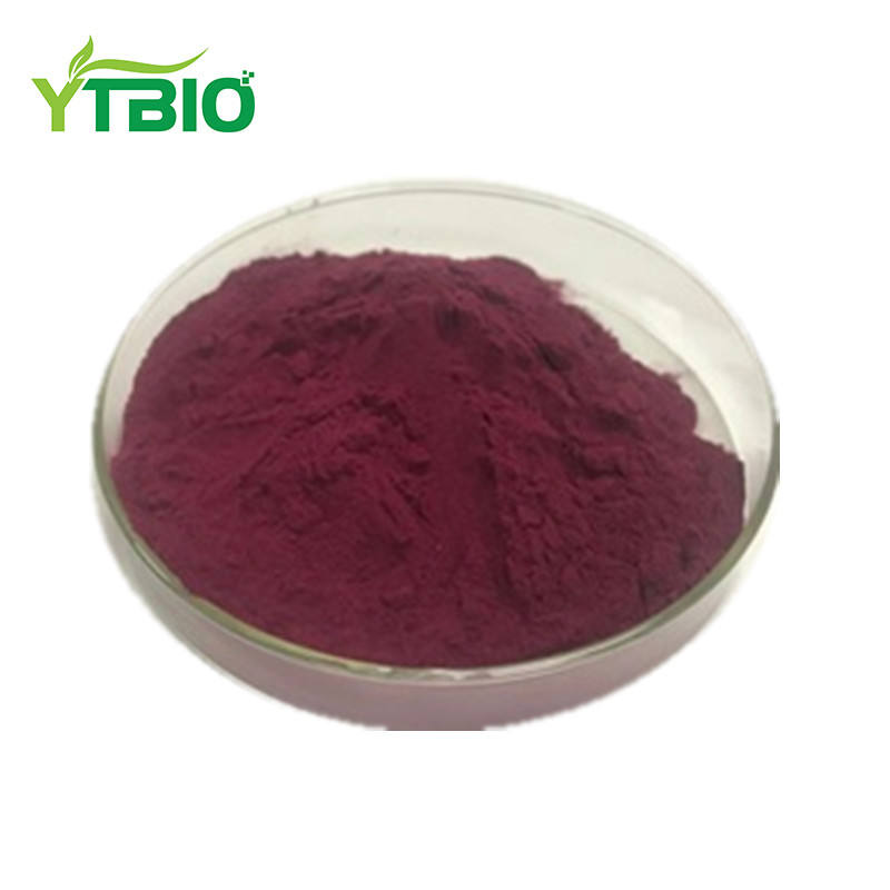 Yuantai Black Carrot Extract Powder in Fruit Extract