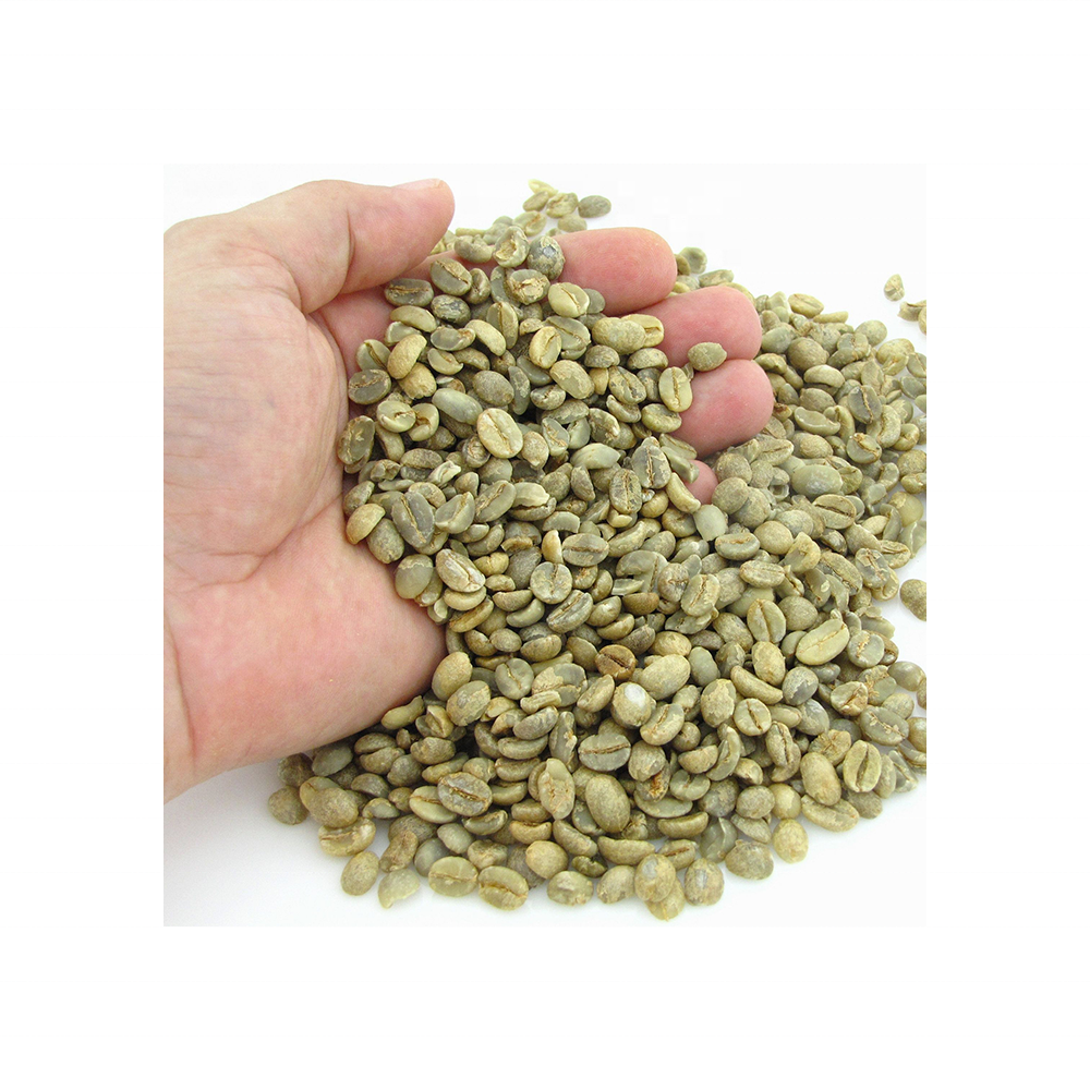 Wholesale Vietnamese High Quality Green Coffee Beans With Best Price Arabica Beans For Import Good Quality Raw Coffee Beans