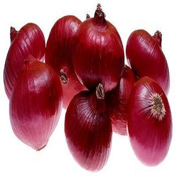 Natural Pure Fresh Red Onions For Sale