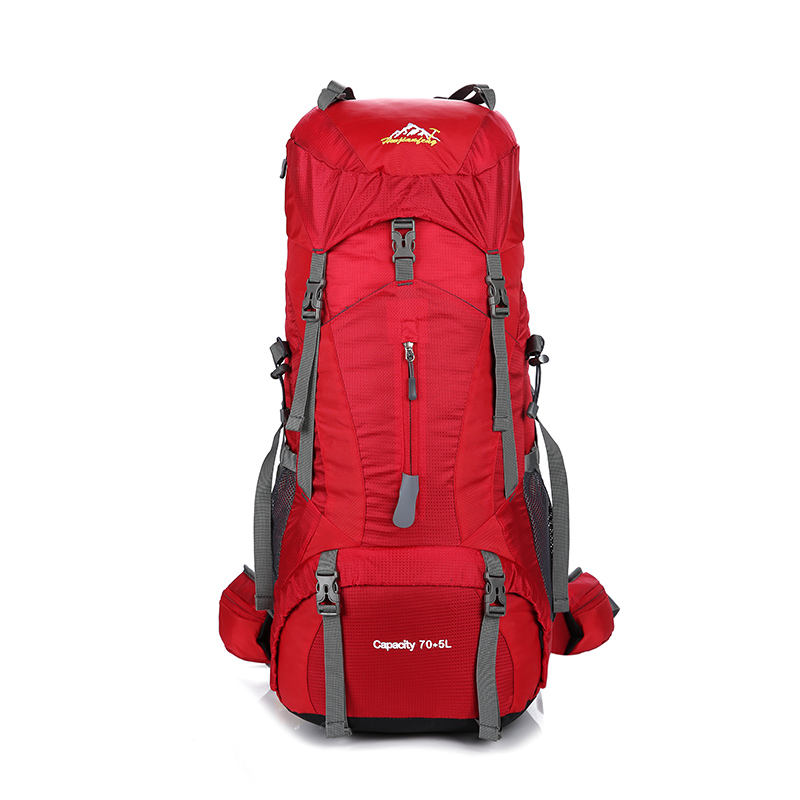 New design nylon professional mountain travelling backpack for camping hiking bag with high quality