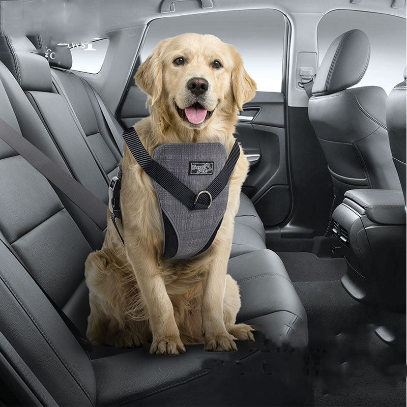 Manufacturer wholesale breathable material nylon pet dog harness vest