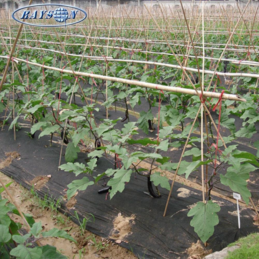 New Product Fabric Rolls Weed Control Agriculture Nonwoven weed control fabric polypropylene weed mat