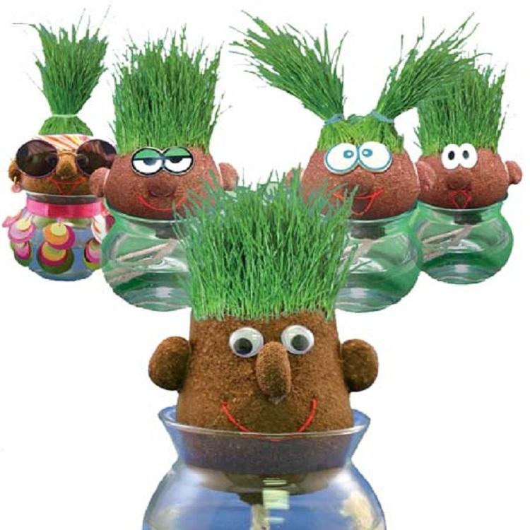 mini plant doll marine life magic grass head cartoon grass doll