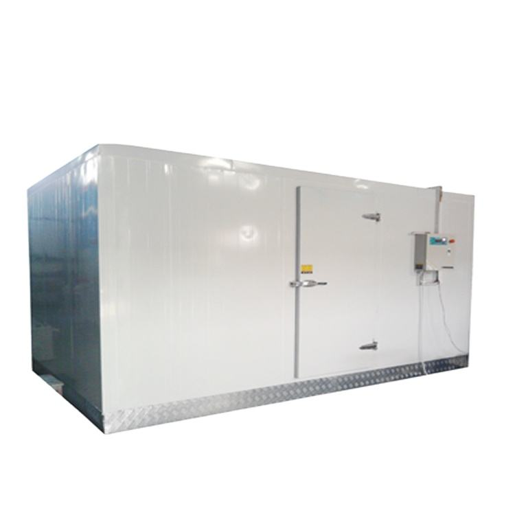 Walk in blast freezer for fish beef chicken