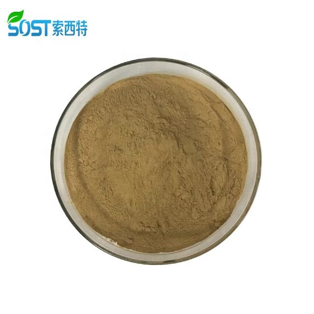 Sost Supply 100% Natural Gember Wortel Extract Poeder Gingerol