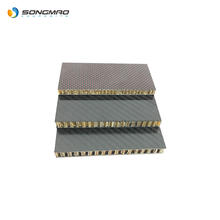 competitive price perforated carbon fiber sheet sandwich composite