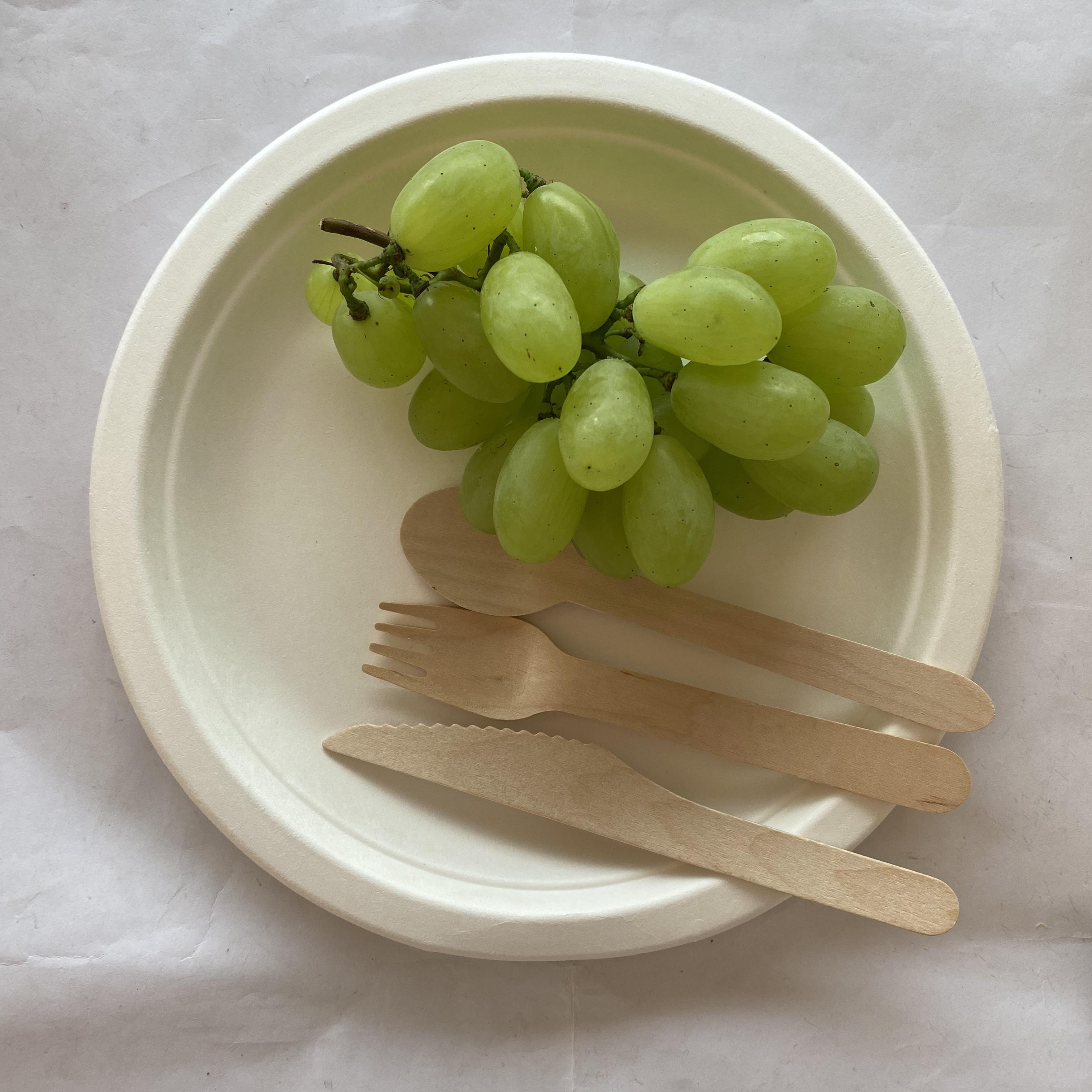 Disposable sugarcane bagasse dishes compostable biodegradable plates saucer bowls