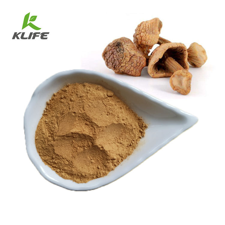 Pure Natural Agaricus Blazei Murill extract for Enhance Immune System