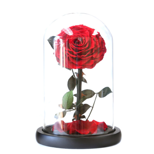 Wholesale Preserved Roses A grade rose Glass with Gift Boxfor wedding Valentine's Day Gifts Box
