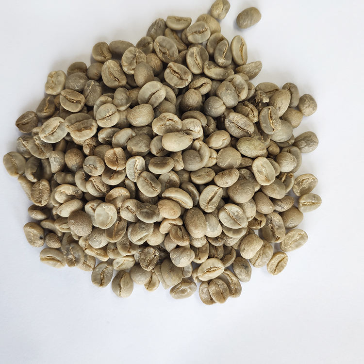 Chinese grade A Coffee beans with Wholesale Arabica Green Coffee Beans
