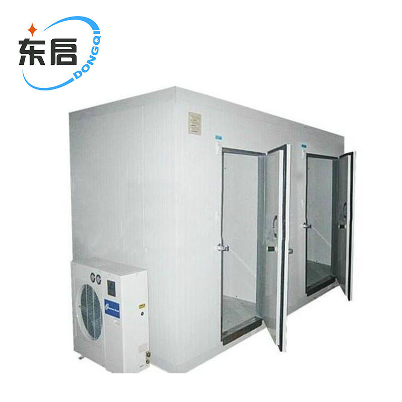 large air blast freezer/container walk-in freezerfor vegetable/meat/flowers