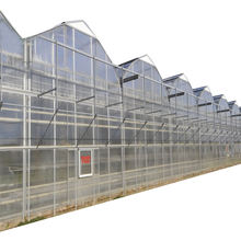 PO  PE Film  PC Board  Glass Covering Muli Span Agricultural house