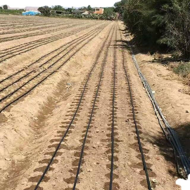 Drip irrigation tube for 1 hectare drip irrigation system