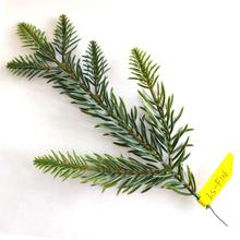 New style PE Artificial Christmas tree pine branches for tree decoration