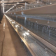 H-type automatic battery cages chicken for laying hens for poultry farm