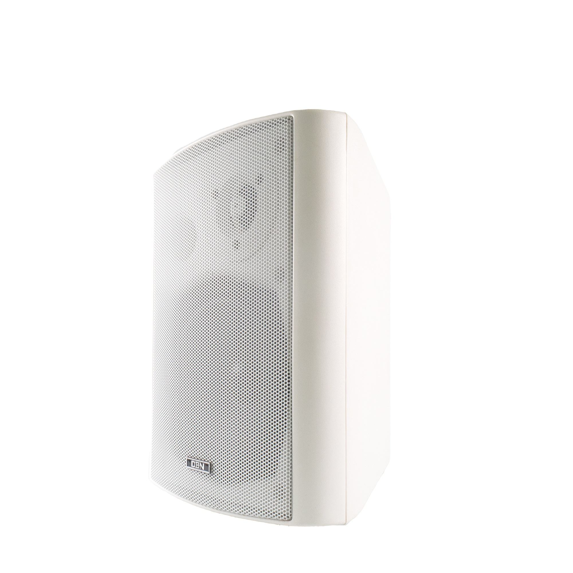 High Quality PA System Passive Speaker Mounted in Wall stage speaker