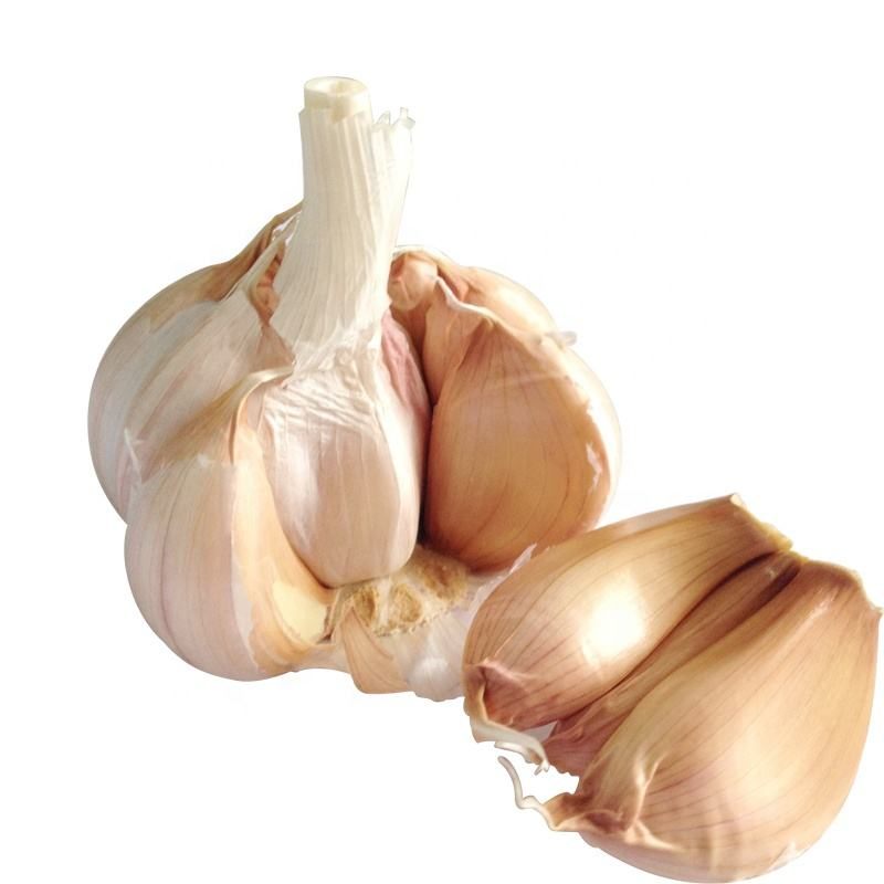 2020 China/Chinese Best Wholesale Fresh Garlic Price -new crop, high quality for export
