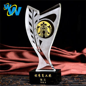 Cheap glass custom shaped crystal acrylic awards and trophies
