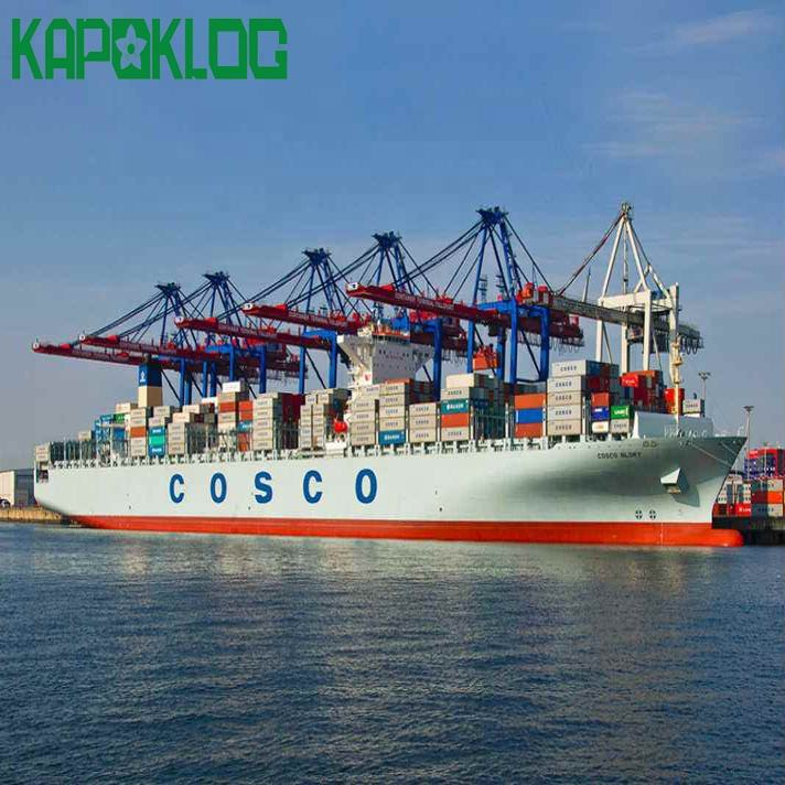 cargo freight shipping company Amazon DDP sea freight forwarder from China to USA EUROP by Kapoklog