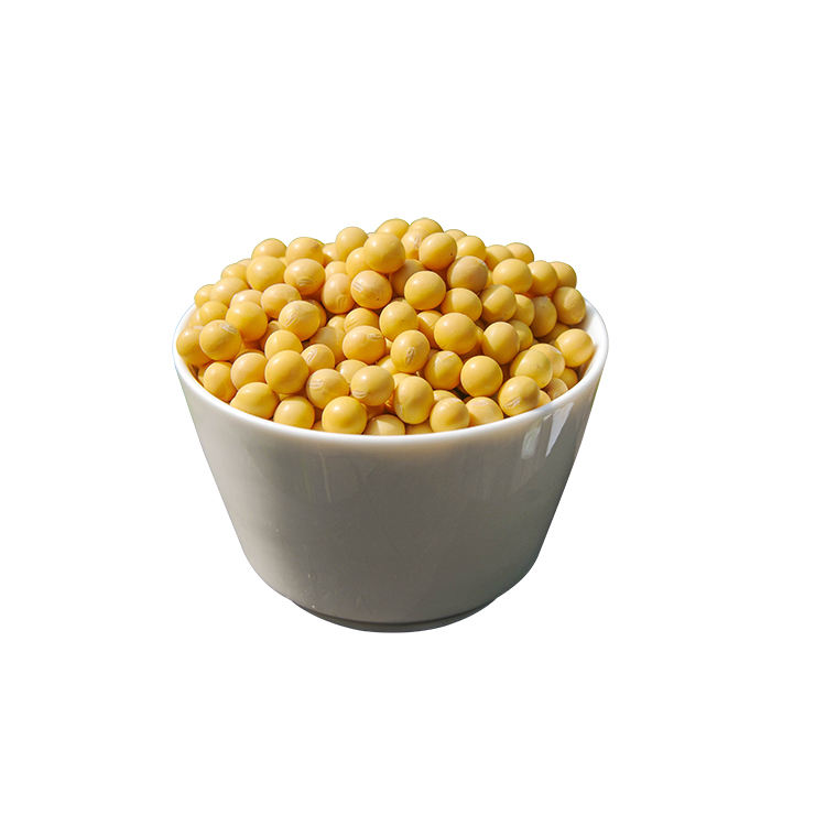 Certified Quality Healthy for Human Consumption Yellow Soybeans