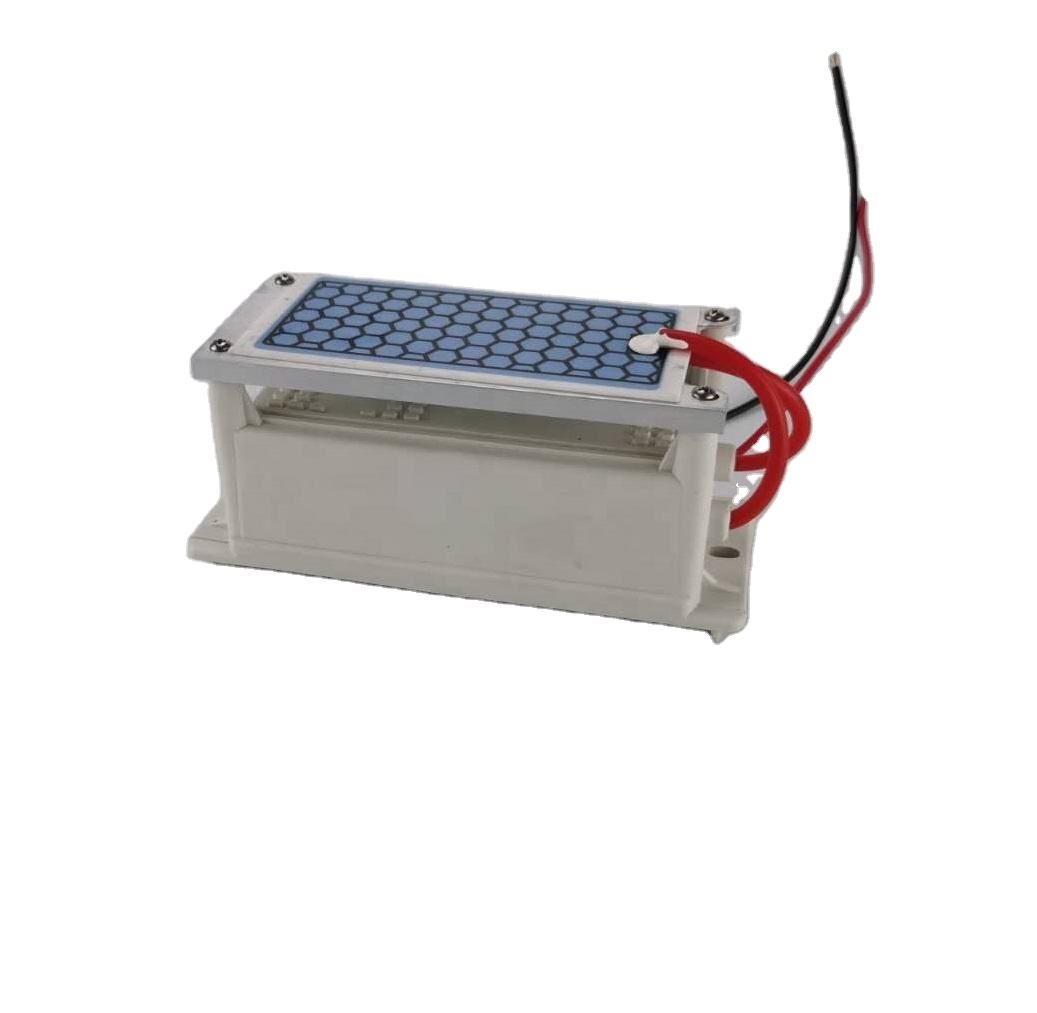 110V or 220V 5g Ceramic Ozone Generator Ozone Plate in Ozone Disinfection Machine Air purifier