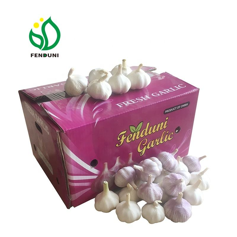 Hot Sales!!! 2020 spanish red garlic / Ajo fresh garlic