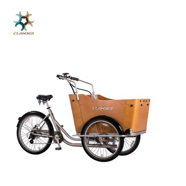 new electric tricycle cargo bike / trike for kids and loved pet T-BOXE
