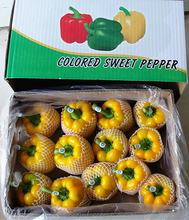 Chinese Fresh Capsicum/Fresh bell pepper/sweet pepper yellow /red/green  +8613953636519