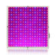 China Professional LED Grow Light Manufacturer Cheap Price Customized Chips LED Grow Panels