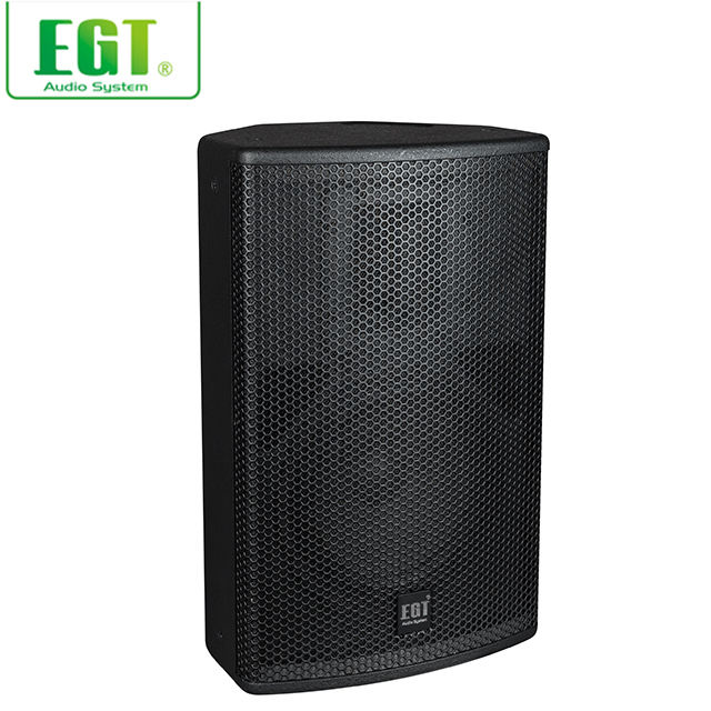 Best selling 2-way class D amplifier powered speaker professional