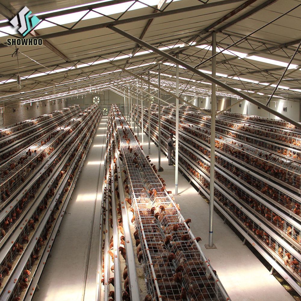 good quality chicken shed/ chicken house for sale in Philippines