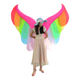 HUAYU 2020 New Arrival High Quality Inflatable Butterfly Rainbow Costume Adult Wing Costume Blow Up Suit