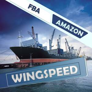 shipping from China to USA wing speed cheap price