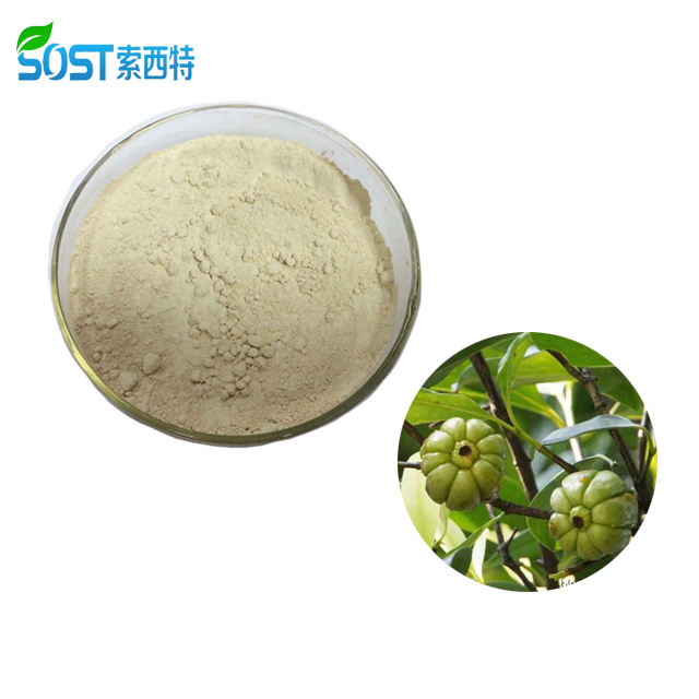 Organische China Product Halal Garcinia Cambogia Extract Capsules