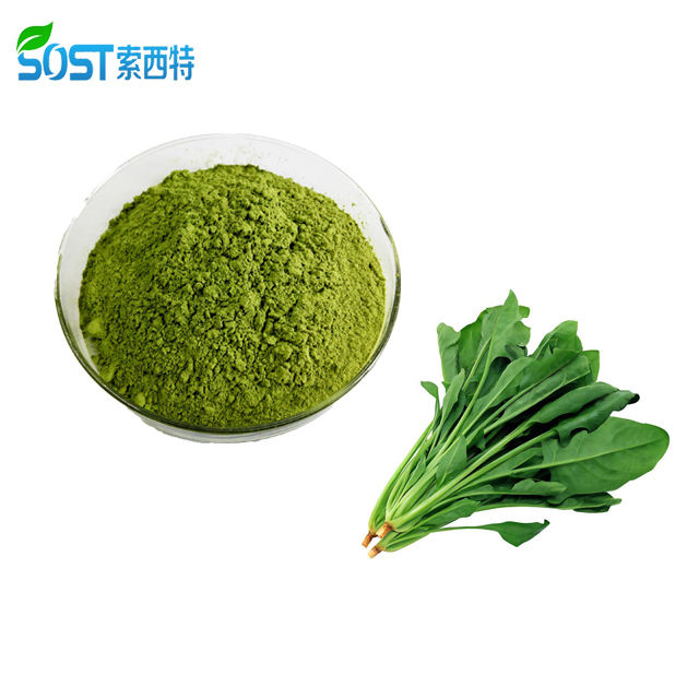 ISO Organic 100% Nutual Vegetable Spinach Extract Juice Powder