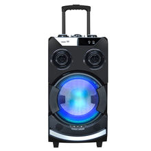 12 inch speaker Subwoofer trolley speaker karaoke subwoofer portable bluetooth speaker with wireless mic