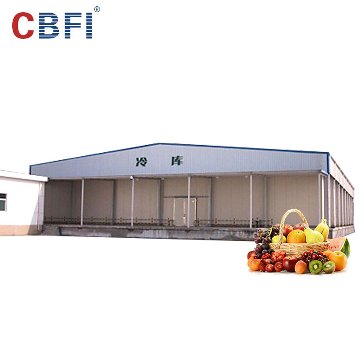 Professional container blast freezer/blast freezer cold room