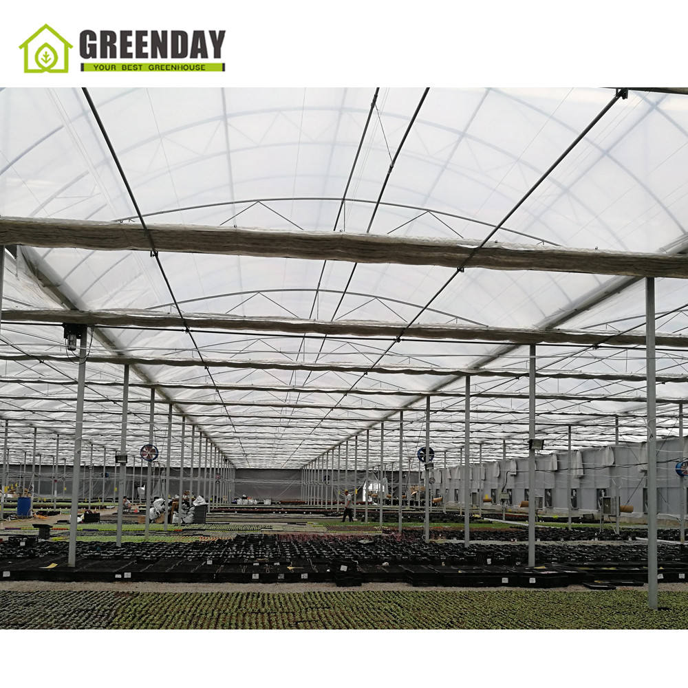 GREENDAY Cheap farming used tropical greenhouse for tropical country