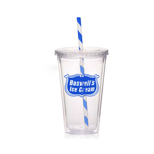 Double Wall Plastic To Go Cold Cup Tumbler with Straw BPA Free 16oz Insulated Travel Mug