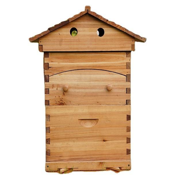 Bienenstöcken von hoher qualität, dass können produzieren ihre eigenen honig sind verkauft direkt durch fabriken