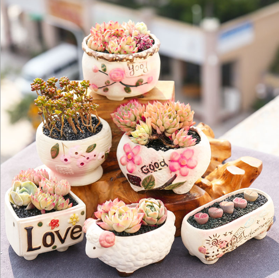 Varnish cute Sunny Girl mini succulent ceramic plant Pot,terracotta flower pot,plant pot garden