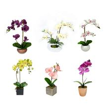 High quality simulation touch feel colorful artificial phalaenopsis orchid flower plastic pots