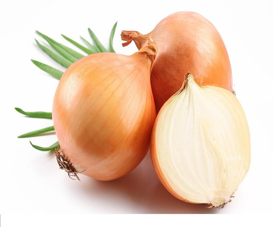 Export Grade China Fresh Yellow Onion for sale