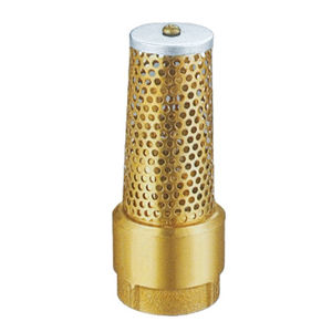 200psi WOG Brass Foot Valve check valve with net stainless steel screen