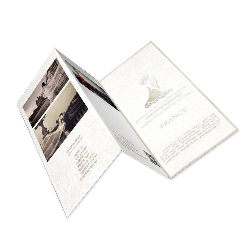 A4 coated paper offset printing folding instructions leaflet Product Brochure