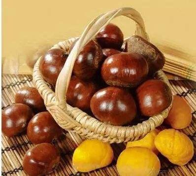 Frozen fresh chestnut and iqf peeled chestnut